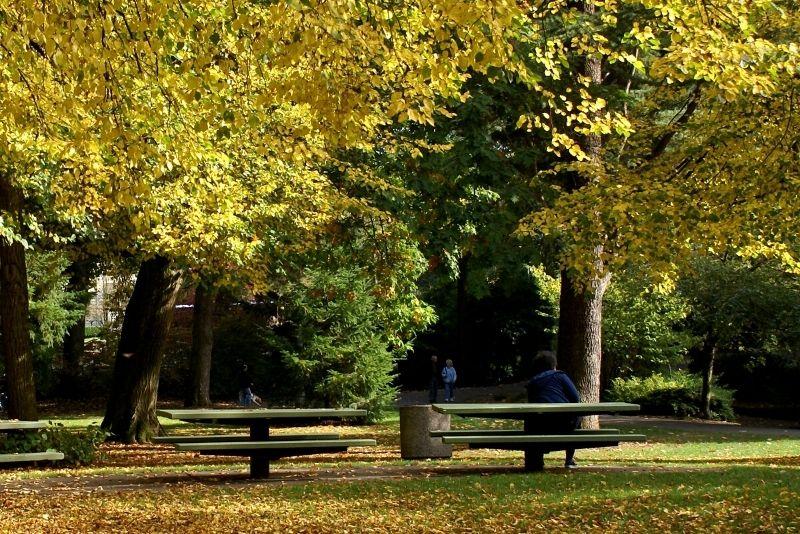 Laurelhurst Park, Portland Oregon real estate