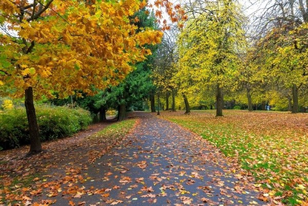 Laurelhurst park in autumn, Neighborhoods of Northeast Portland Oregon