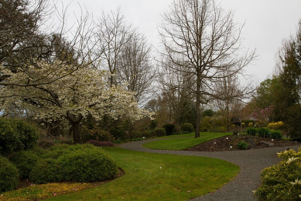 Silverton Gardens in Silverton Salem Oregon, Where to live in Salem Oregon, PDX real estate