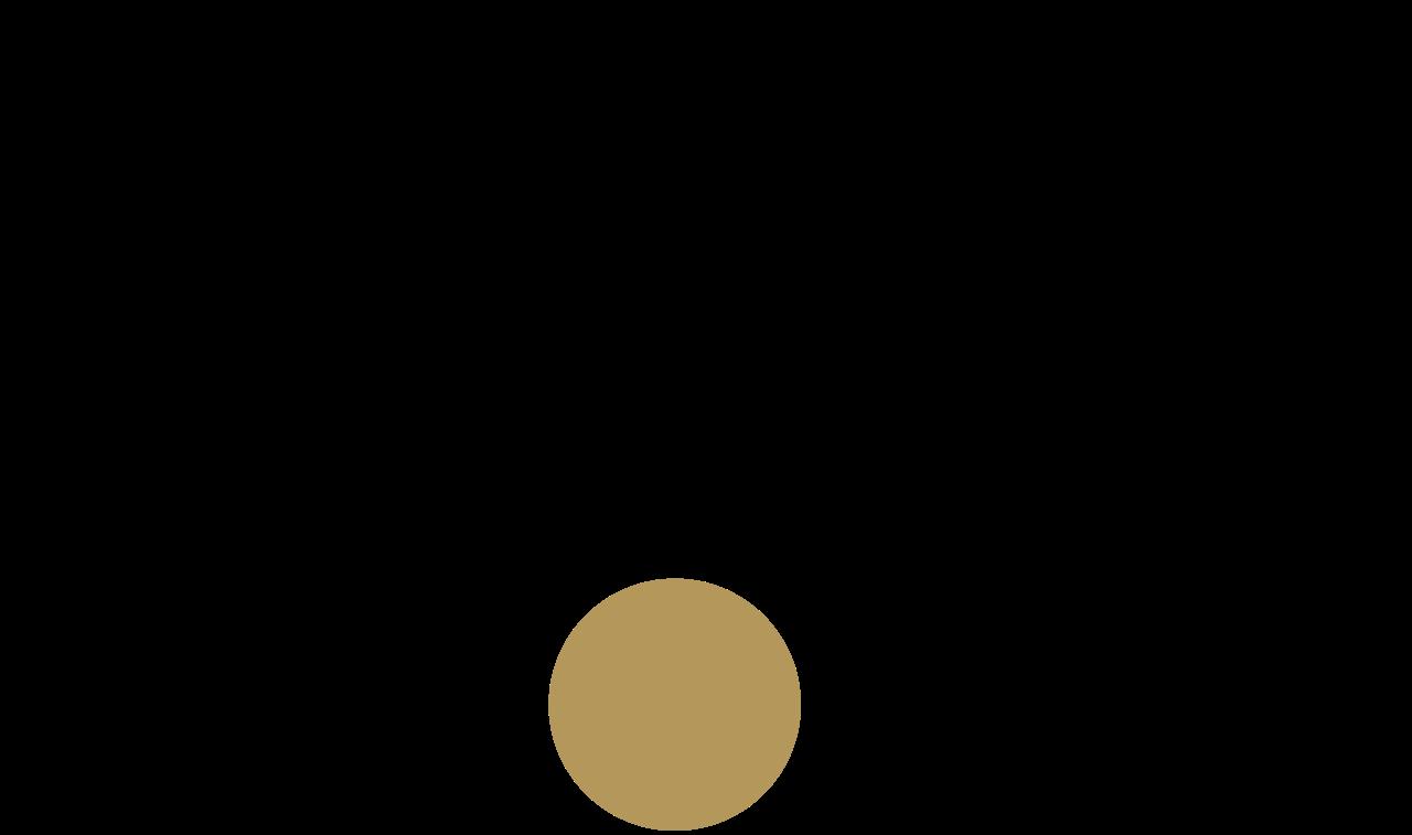 rode mic logo